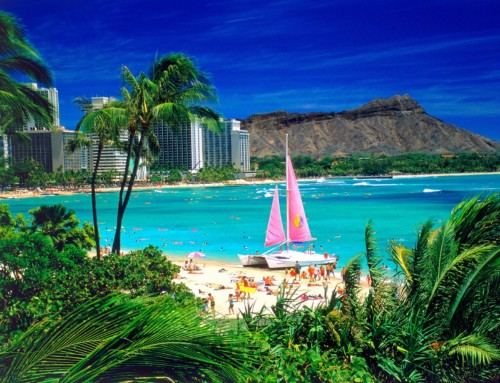 Travel Show: Hawaii Noodle Town