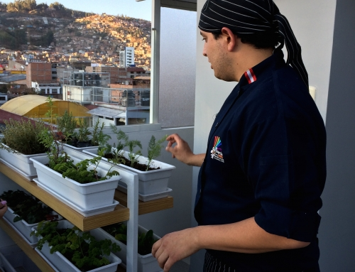 A Modern Cooking Class in Cusco