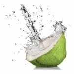 coconut_0