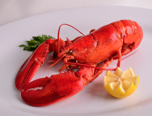 Lobster Taxi