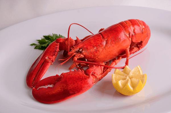 Lobster Taxi - Bohemian Vagabond ~ Jacki Ueng