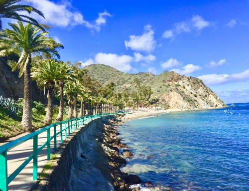 Beach Getaway to Catalina Island