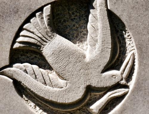 Online Course: Religion, Conflict & Peace