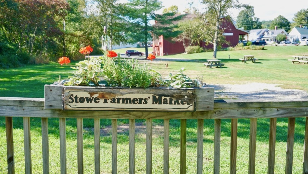 what to eat and drink in stowe