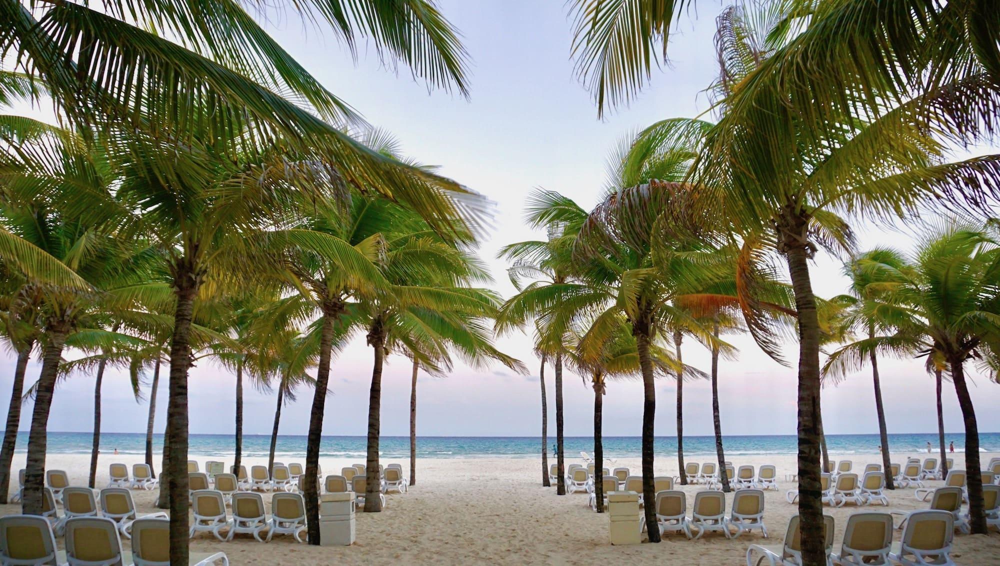 hotel riu palace beach photos