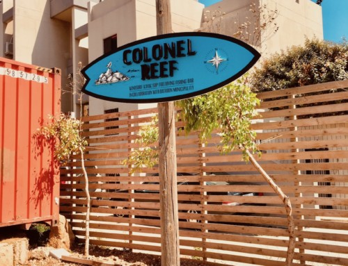 Lebanon's Surf, Sun & Craft Brew at Colonel Reef
