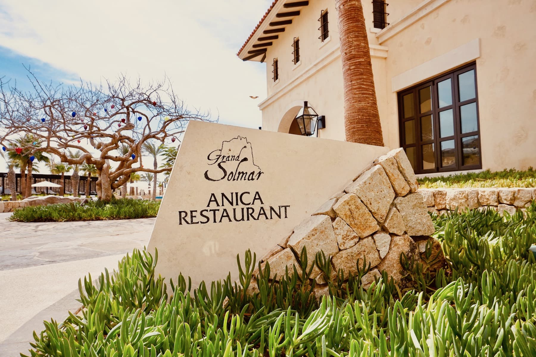 restaurants at rancho san lucas