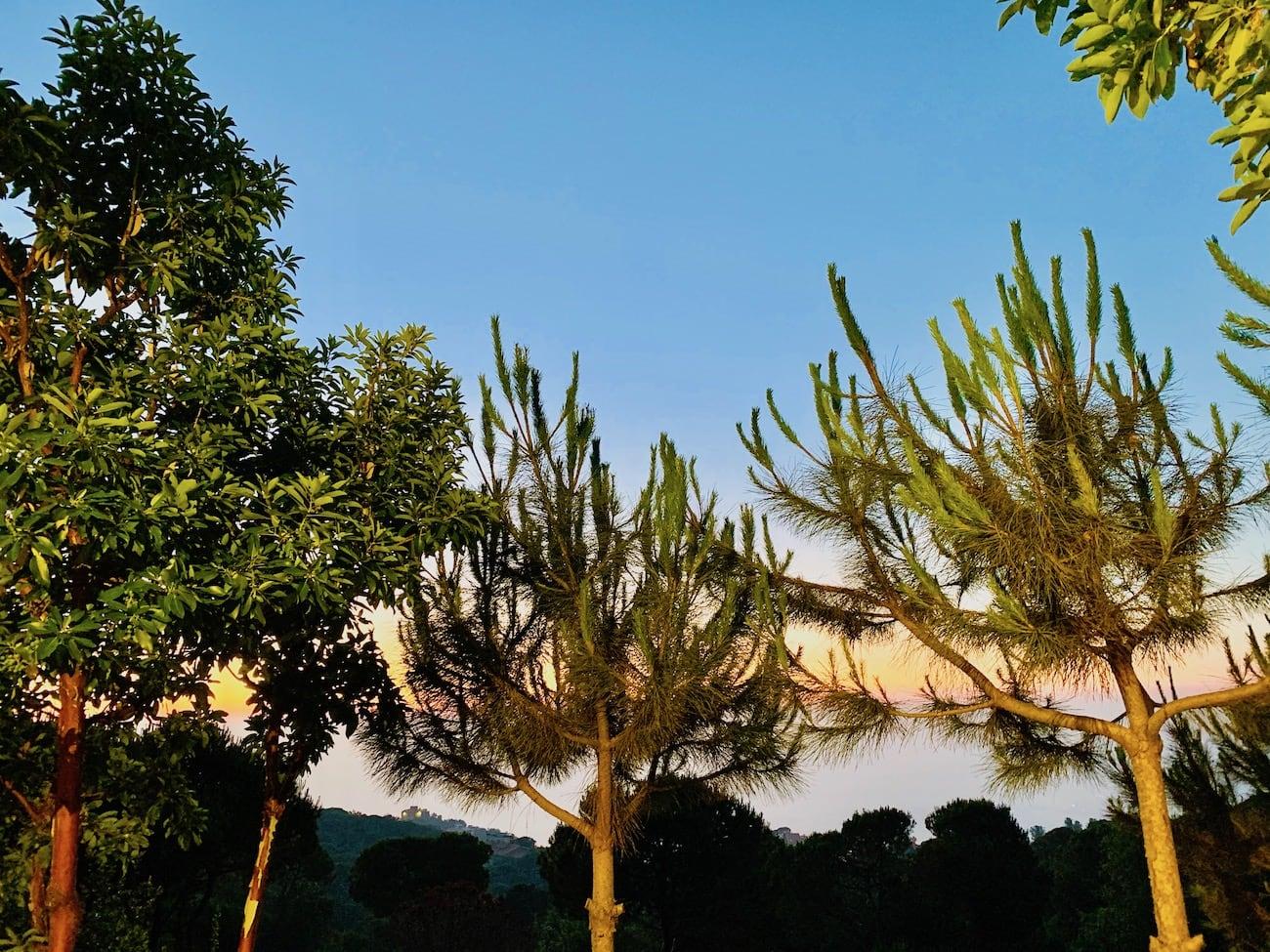 Practical Tips On Traveling To Lebanon Bohemian Vagabond Jacki Ueng