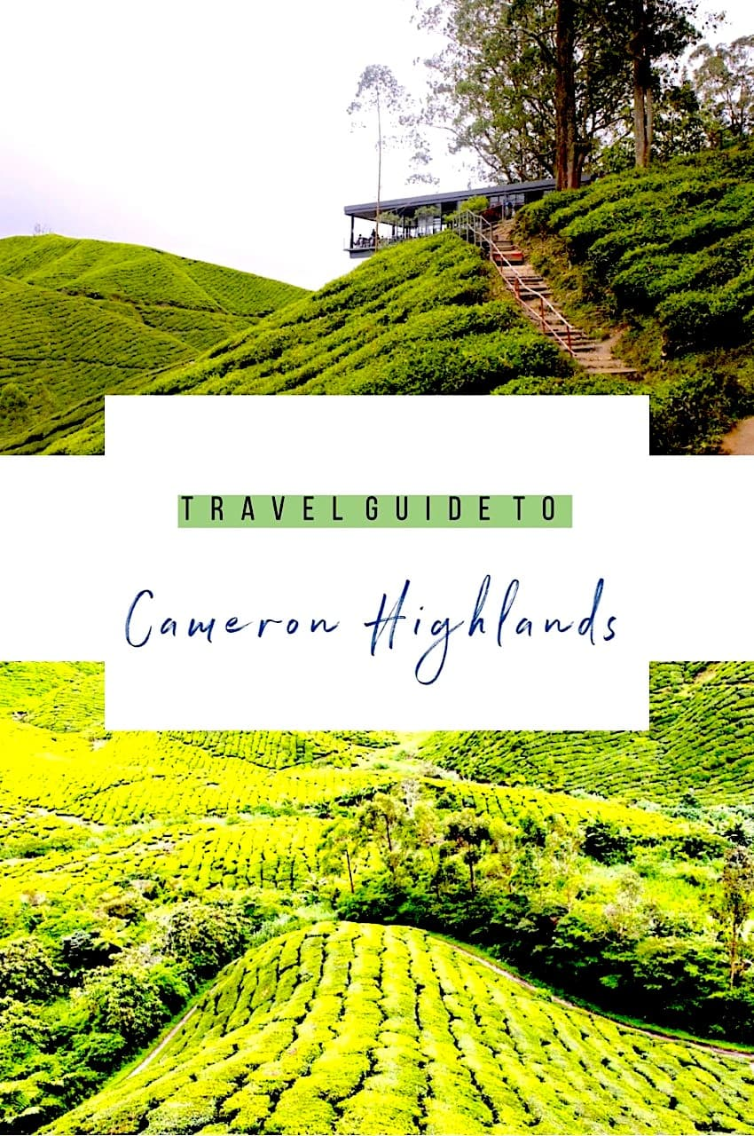 travel guide to cameron highlands